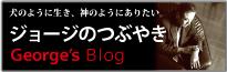 George's Blog